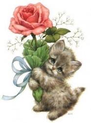 котёнок с розой