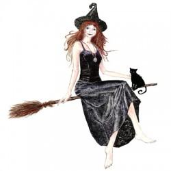 ведьма и кот